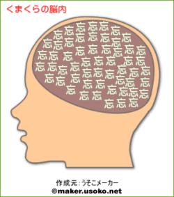くまくらの脳内